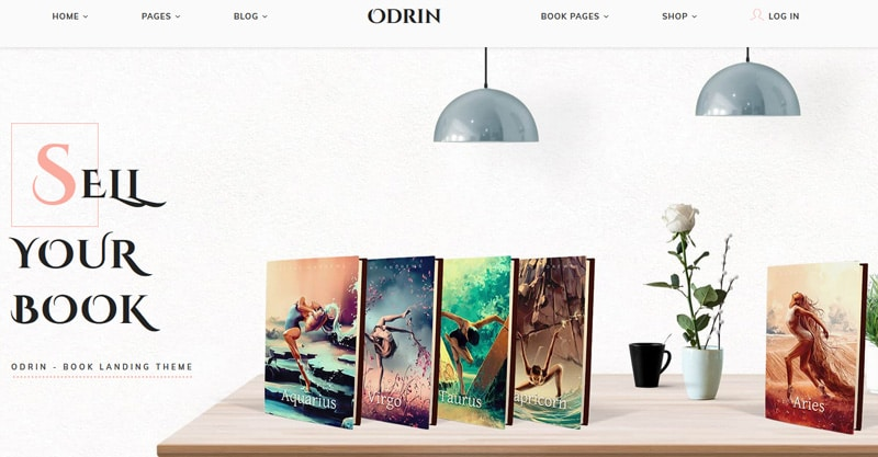 What Are Some Good WordPress Themes For Author's Websites?