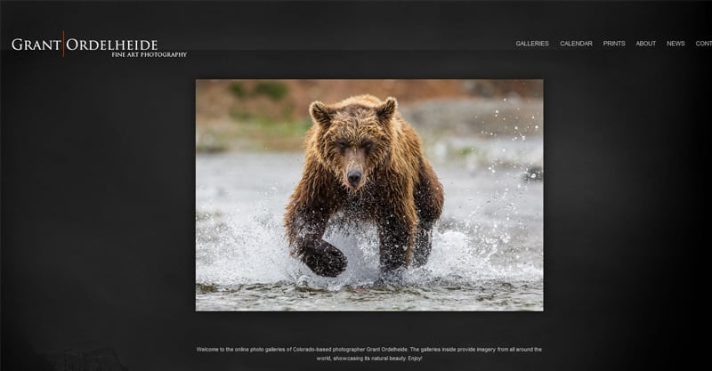 Other Business Photography Websites You Could Draw Inspiration From